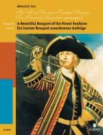 Die Kunst des Barocktrompetenspiels